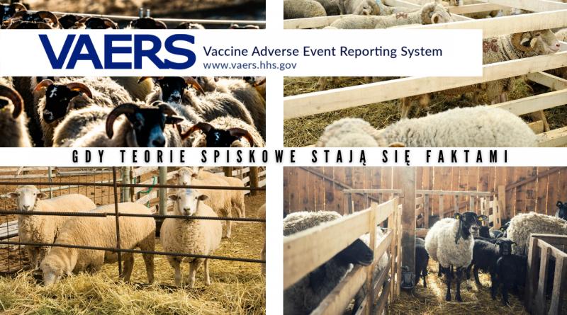 Dane z VAERS – system wczesnego ostrzegania przy podawaniu szczepionek w tym COVID-19